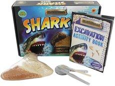 """Зъб на акула - Детски образователен комплект от серията """"Dig and Discover"""" -"""