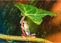 """Жаба под дъжда - Пъзел от колекцията """"Premium Quality"""" -"""
