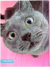 Папка с ластик - Котка