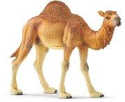 """Едногърба камила - Фигурка от серията """"Светът на дивите животни"""" - фигура"""
