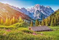 Лято в Алпите -