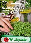Семена от микро растения - Босилек
