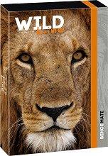 Кутия с ластик - Wild Life Moments