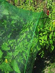 Предпазна мрежа за растения