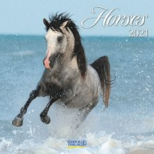 Стенен календар - Horses 2021 -