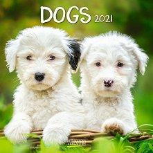 Стенен календар - Dogs 2021 -