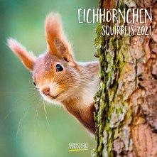 Стенен календар - Eichhornchen 2021 -