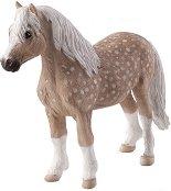 Уелско пони - фигура