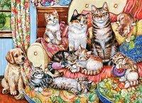 Семейство котки -