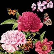 Салфетки за декупаж - Цветя и пеперуди на черен фон