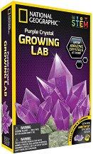Лаборатория за кристали - Аметист - играчка