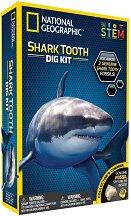 Изкопай сам - 3 зъба на акули - Детски образователен комплект - образователен комплект