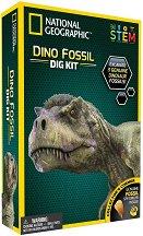 Изкопай сам - Фосил от динозавър - образователен комплект