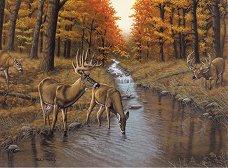 Рисуване по номера с акрилни бои - Елени - Комплект за картина с размери 39 x 30 cm