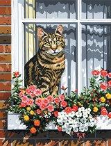 Рисуване по номера с акрилни бои - Котка на прозорец - Комплект за картина с размери 23 x 30 cm