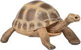 Шипоопашата костенурка - играчка