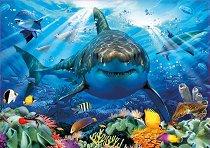 Бяла акула -