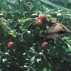 Защитна мрежа срещу птици - Ortoflex