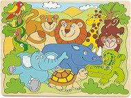 Животните от Африка -