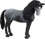 Чистокръвна испанска кобила -
