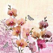 Салфетки за декупаж - Орхидеи