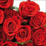 Салфетки за декупаж - Червени рози - Пакет от 20 броя