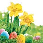 Салфетки за декупаж - Нарциси с великденски яйца