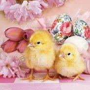 Салфетки за декупаж - Великденски пиленца