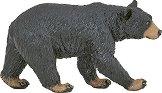 Американска черна мечка -