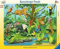 Тропически животни -