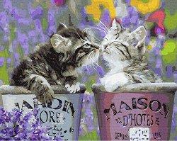 Рисуване по номера с акрилни бои - Котешки целувки