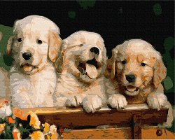 Рисуване по номера с акрилни бои - Кученца