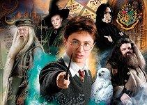 Хари Потър - фигура