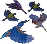 Цветни стикери за защита на прозорци от сблъсък на птици