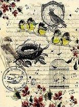 Декупажна хартия - Птици