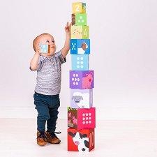 Кула от кубчета - Животни и числа -