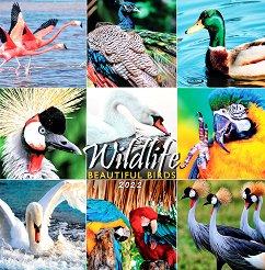 Стенен календар - Wildlife: Beautiful Birds 2022 -