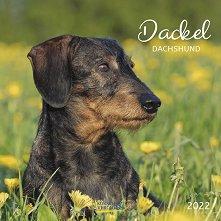 Стенен календар - Dackel 2022 -