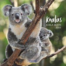 Стенен календар - Koalas 2022 -