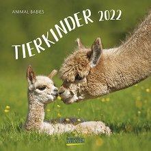 Стенен календар - Tierkinder 2022 -