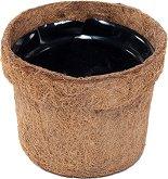 Кашпа от кокос - Coconut