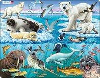 Полярни животни - Пъзел в картонена подложка - пъзел