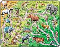 Еволюция - Образователен пъзел в картонена подложка - пъзел