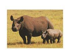 Носорози - Мини пъзел - пъзел
