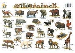 Wild Animals - стенно учебно табло на английски език - 39 x 27 cm -