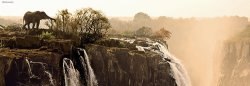 "Слон - панорама - Колекция ""Александър Фон Хумболт"" (Alexander von Humboldt) - пъзел"