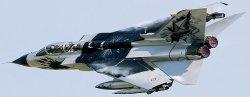 Военен самолет - Tornado Ids Black Panthers - Сглобяем авиомодел -