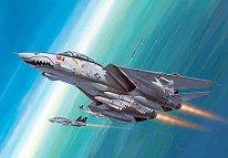 Военен самолет - F-14D Super Tomcat -