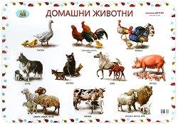 Двустранно учебно табло: Домашни животни. Диви животни -
