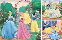 Принцесите на Дисни -